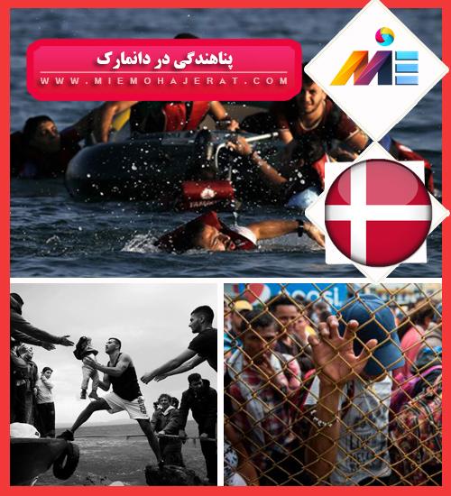 پناهندگی در دانمارک