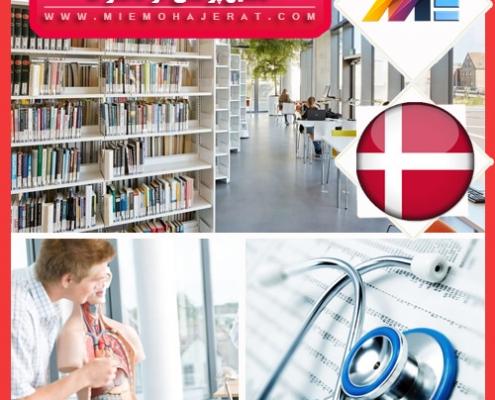 تحصیل پزشکی در دانمارک