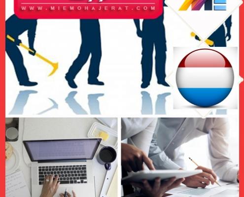 کار در هلند