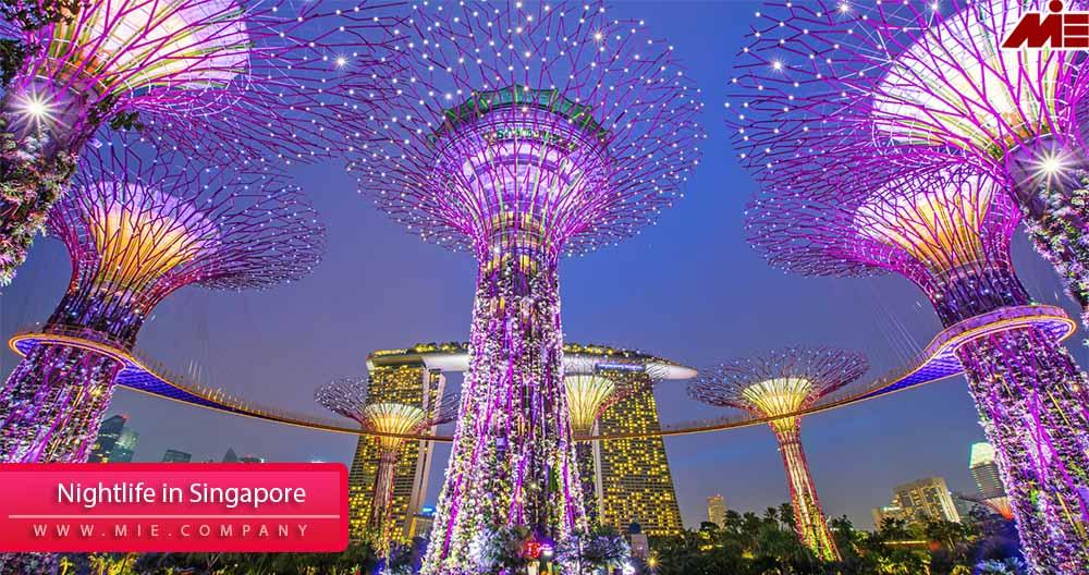 پاسپورت سنگاپور ۱