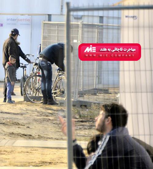 مهاجرت قاچاقی به هلند