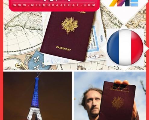 خودحمایتی فرانسه