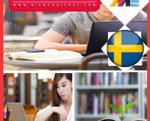 مدارک و شرایط لازم برای اخذ پذیرش در سوئد