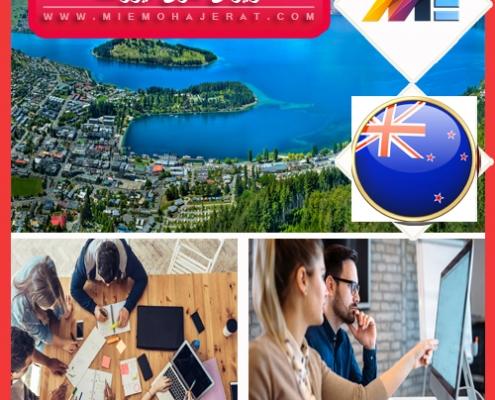 ویزای کاری نیوزلند