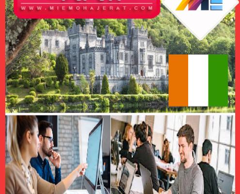 ویزای کاری ایرلند
